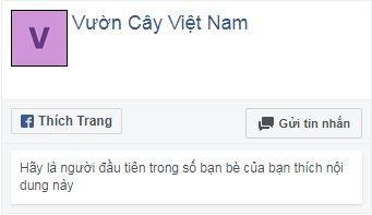 Facebook Vuoncay
